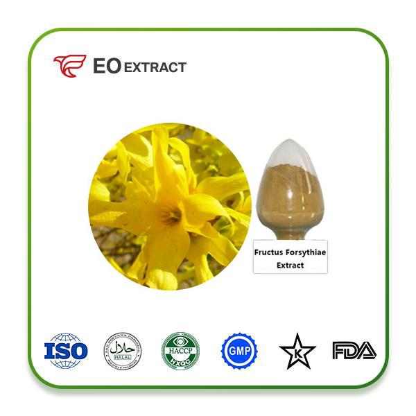 Fructus Forsythiae Extract