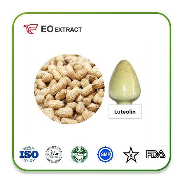 Luteolin Extract