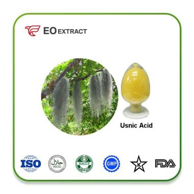 Chinese Lichen Usnea Extract