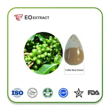 Chlorogenic Acid Extract