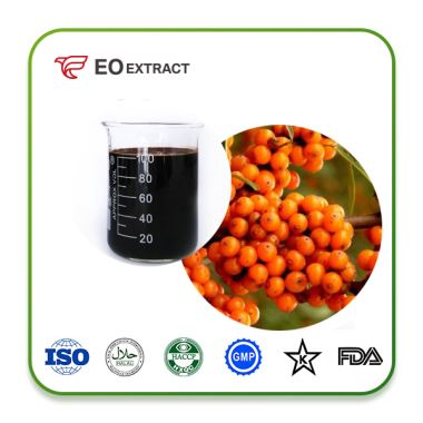 Sea Buckthorn Concentrate