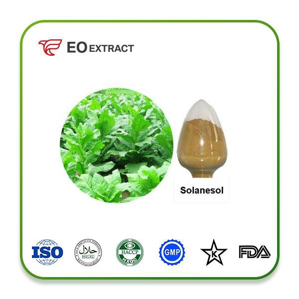 Solanesol Extract